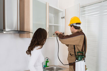 Pest Control Services Uptown Mirdiff